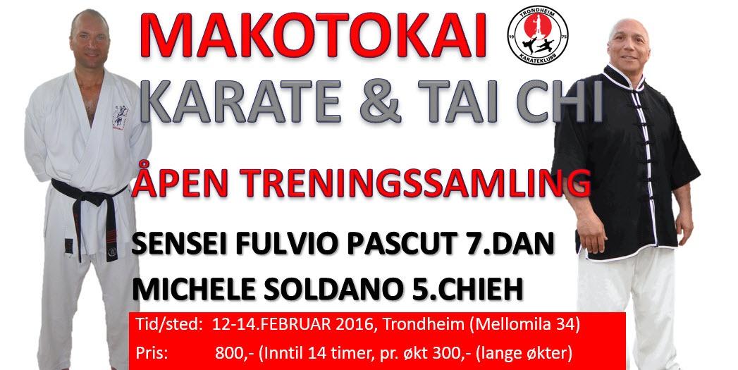 Åpen treningsamling med Fulvio Pascut 7.dan og Michele Soldano 5.chieh 12-14.feb 2016