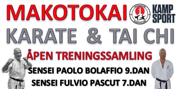 Samling med Paolo Bolaffio 9.dan og Fulvio Pascut 7.dan  1-3.april 2016