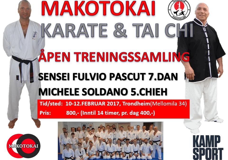 Makotokaisamling 10-12.feb 2017 med Fulvio Pascut 7.dan og Michele Soldano 5.chieh